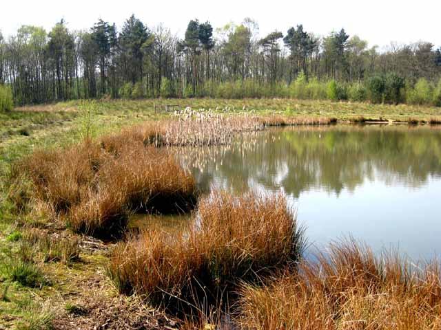 Oakenshaw Wildlife Reserve
