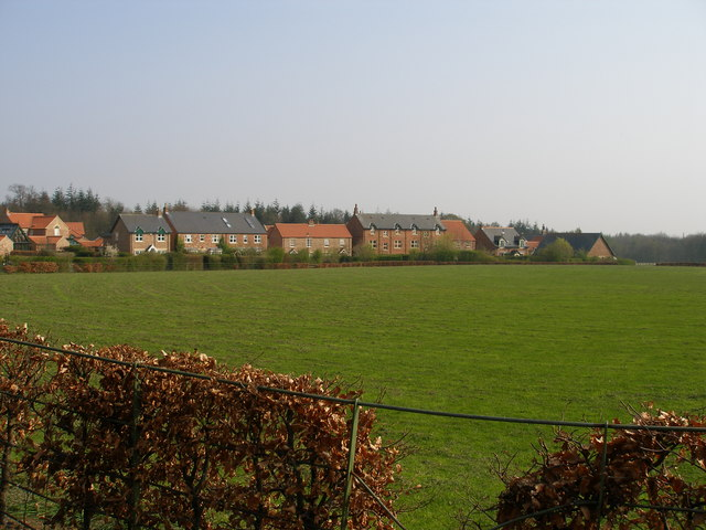 Wynyard village cricket ground.