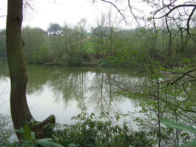 The Pool in the Wilderness, near Compton Cottage Farm, Staffordshire