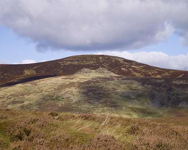 Grouse Moor at Linhope Burn