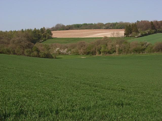 Farmland, Crux Easton