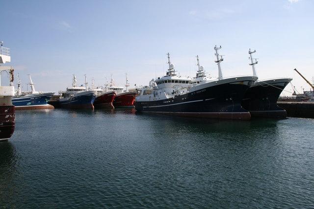 Fishing Fleet at Fraserburgh
