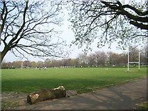 O1329 : Playing Fields in Bushy Park, Terenure by JP