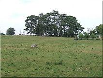 NZ0886 : School playing field by Richard Dawson