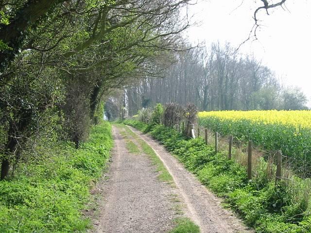 Cherrygarden Lane and Nooketts Wood on left