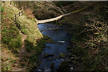 J3996 : Above Glenoe waterfall (2) by Albert Bridge
