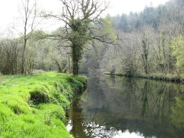 River Tavy, Buckland Abbey Estate