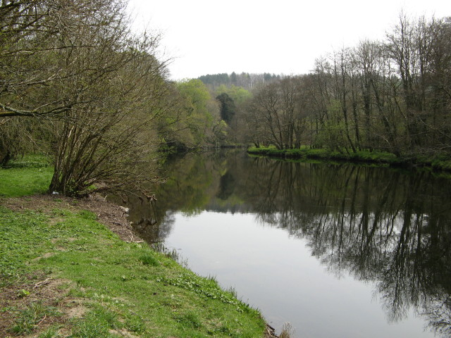 River Tavy, Buckland Abbey Estate