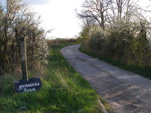 Farm road to Neasless farm