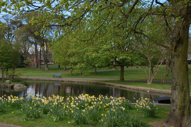 Ward Park, Bangor (3)