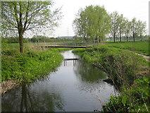 TL1401 : River Colne by Nigel Cox