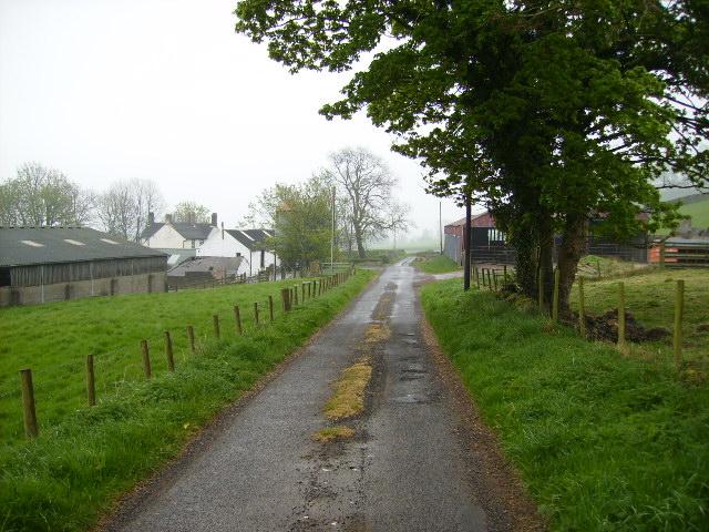 Lane passing through Milliganton farm