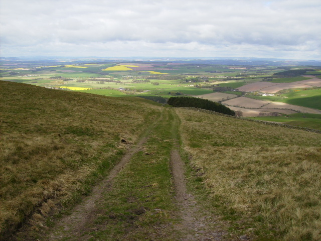 St.Cuthbert's Way Long Distance Footpath passing over Grubbit Law (326m)