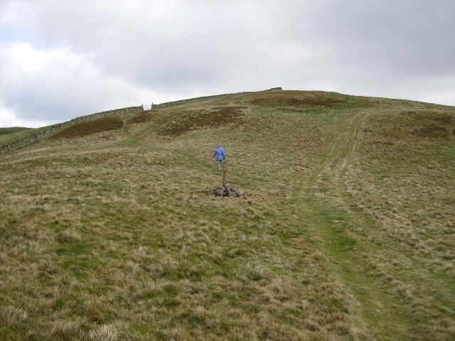 St. Cuthbert's Way near Grubbit Law