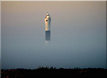 TR0916 : The New Lighthouse at Dungeness by John Mavin