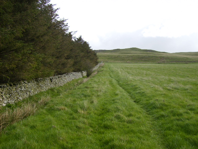 On St.Cuthbert's Way long distance path