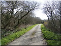 SW7820 : The lane to Trevalsoe by Jonathan Billinger