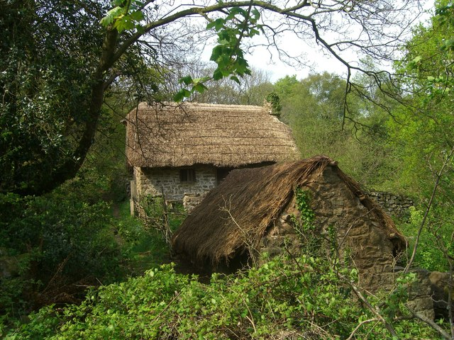 Thatched farm buildings