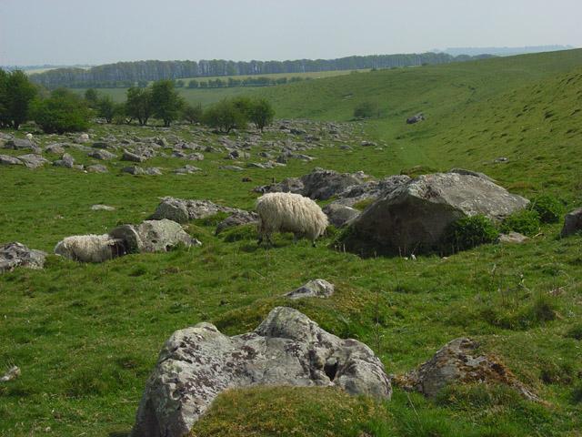 Sarsen stones, Fyfield Down