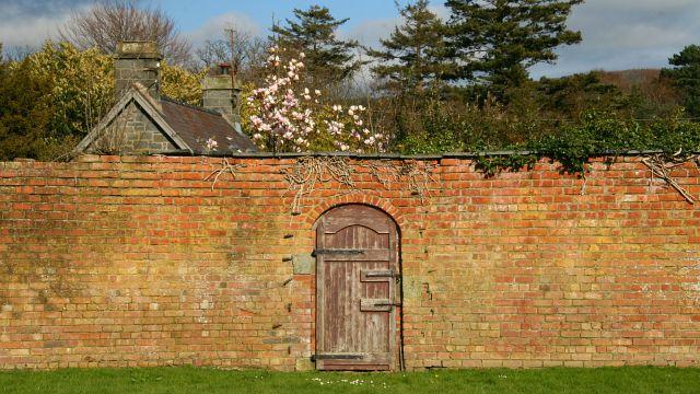 Door To The Secret Garden