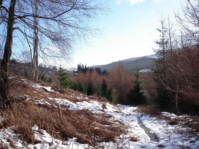 Black Mountains path