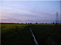 SE6350 : Ditch from Low Lane by DS Pugh