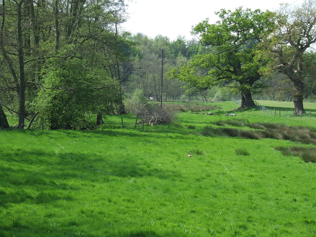 Grazing land by the brook, Stableford, Shropshire