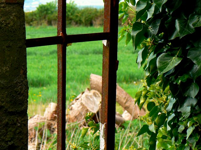 Inside looking out of another window, Nebo Farm, Clyffe Pypard
