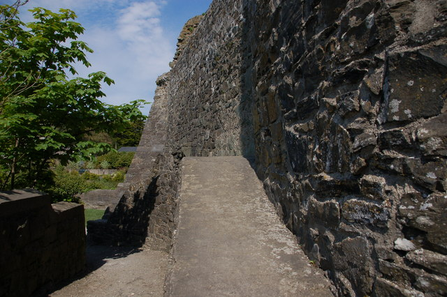 Carlingford Castle (3)
