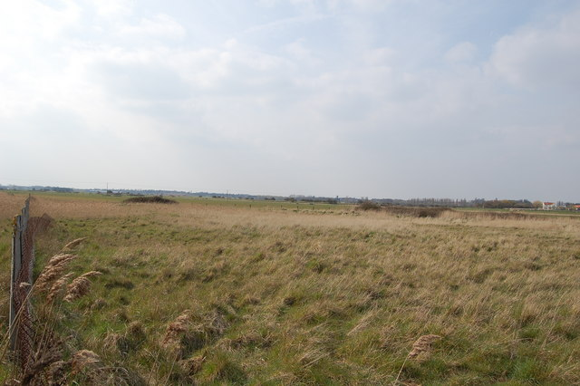 Oxley Marshes
