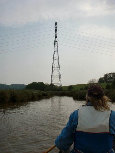 Salt marsh on the River Tavy.