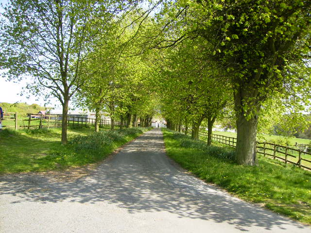 Drive and public right of way to Potter Hill Farm