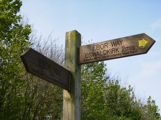 Fingerpost at path junction leaving lane near Cawton