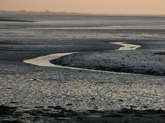 Mud near Chidham Point