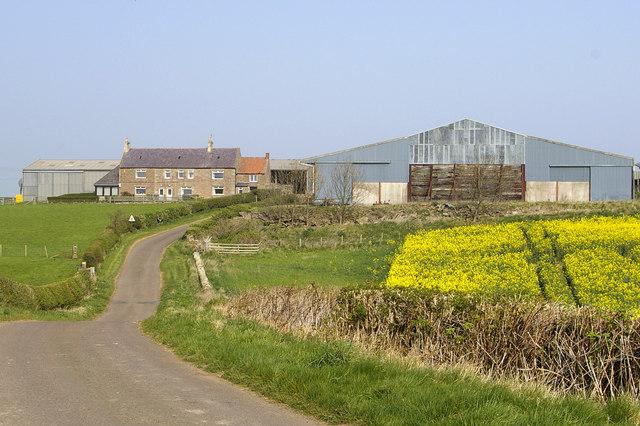 Kentstone farm