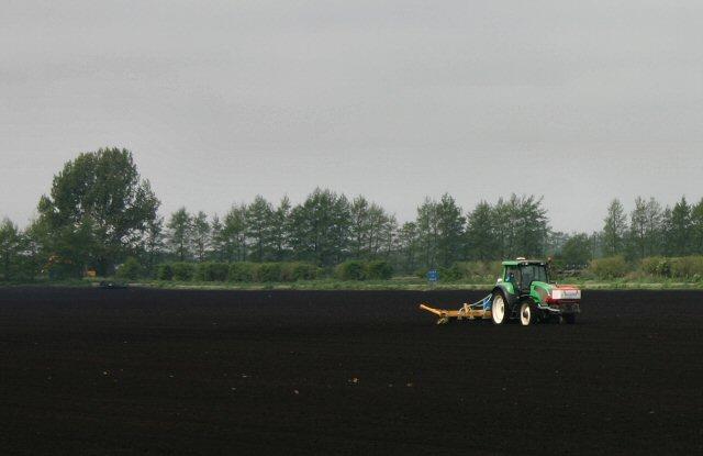 Black soil at Methwold Fen