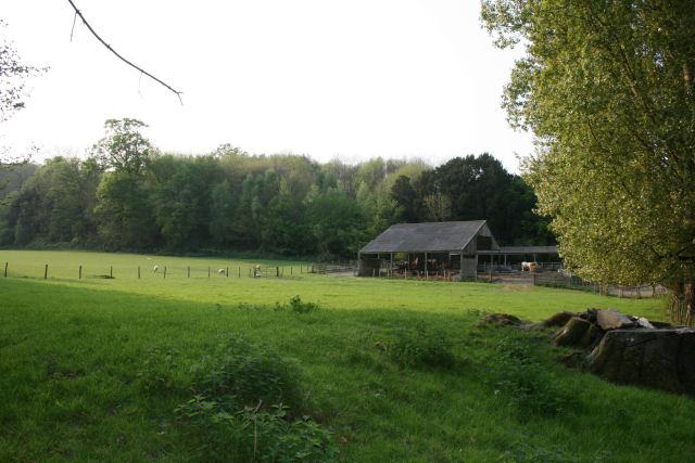 Meadow and barns opposite Challock Manor