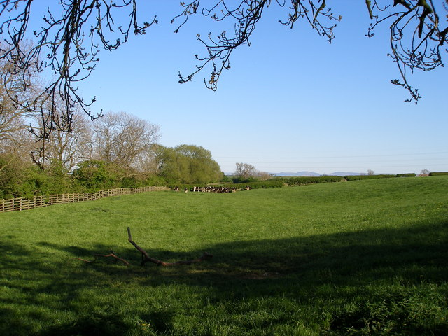 Pasture land alongside Little Stainton Beck