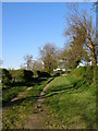 NZ3021 : High House Lane from the junction with Lovesome Hill farm road by Carol Rose