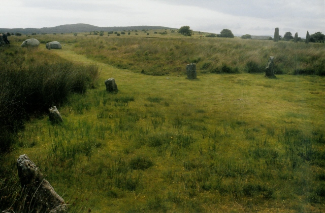 Stone circles on Machrie Moor