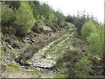 NS1385 : Path above Benmore by Richard Webb