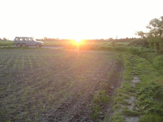 Sunset over Boreham, Essex