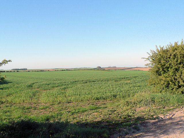 High Wolds Fields