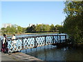 NS5467 : Bridge to the island in the pond at Victoria Park by Darrin Antrobus