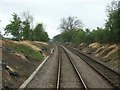 SK8940 : Lineside Clearance by Donnylad