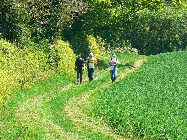 Walkers on the Macmillan Way approaching Buckland Dinham, Somerset