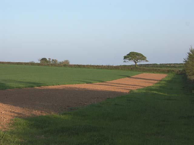 Arable land near Gare