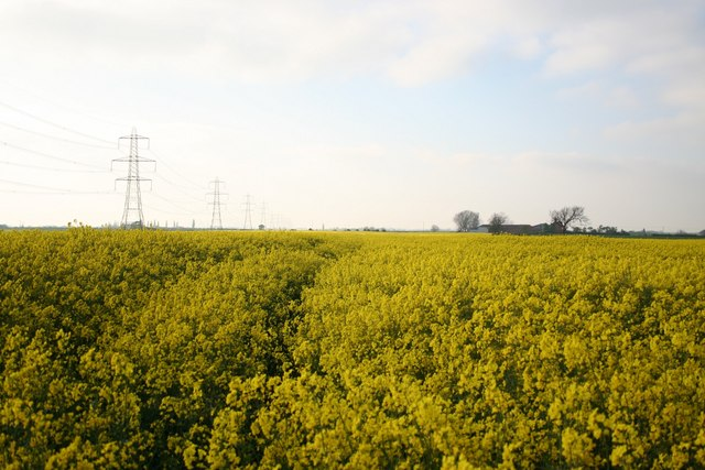 Hardwick farmland