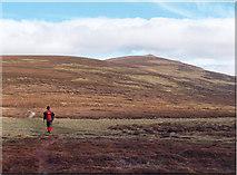 NN8575 : Climbing Beinn Dearg by Phil Johnstone