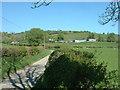 SO1781 : Rhyd-y-cwm farm by David Medcalf